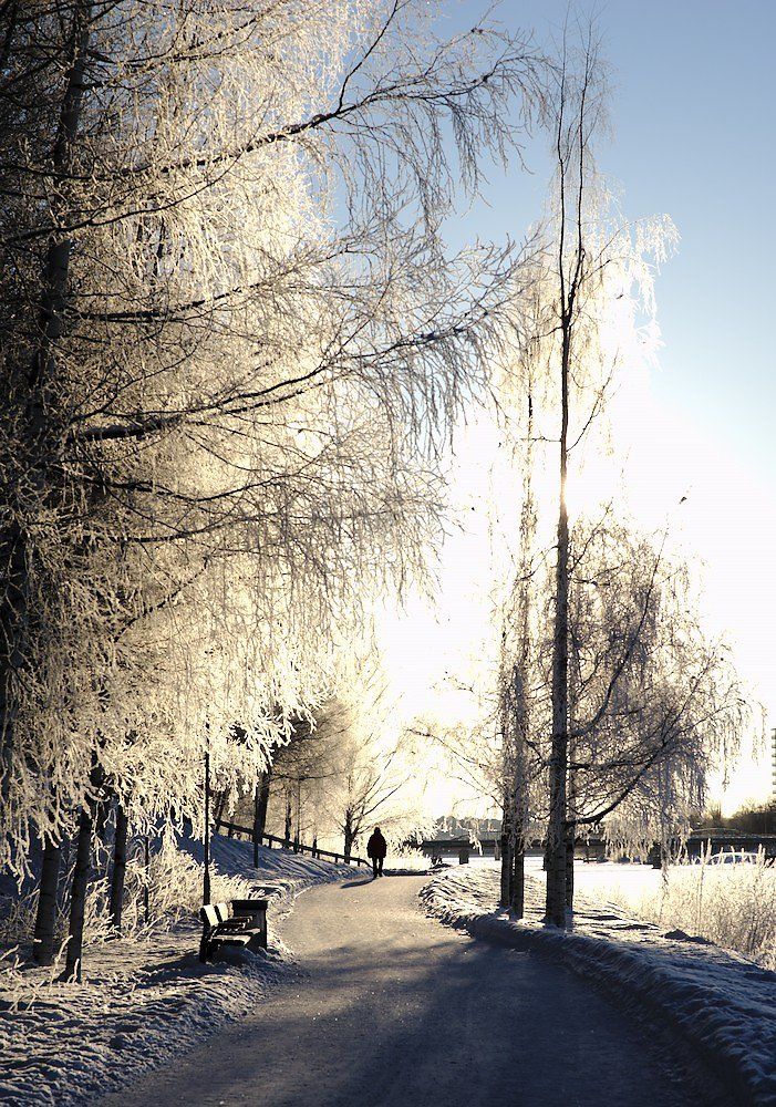 Marche hivernale